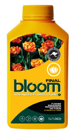 BLOOM  FINAL  1 LTR