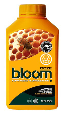 BLOOM  OOZE  1 LTR