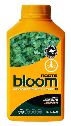BLOOM  ROOTS  1 LTR