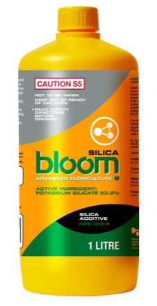 BLOOM  SILICA  1 LTR