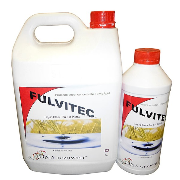 DNA  FULVITEC  1 LTR
