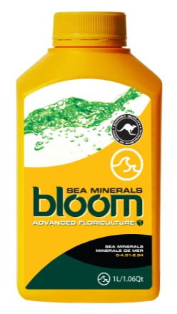 bloom sea minerals